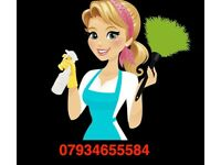 Lady Cleaner Ironing Laundry Sutton Over 15 Years Cleaning Reliable Lady Sutton