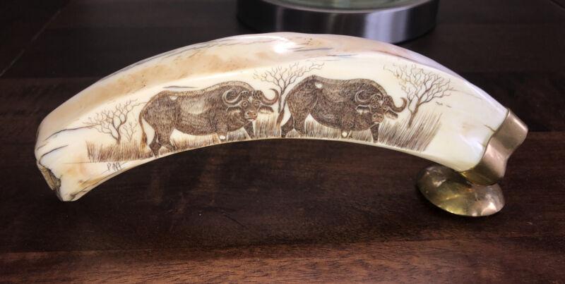 Warthog Tusk With Two Cape Buffalo