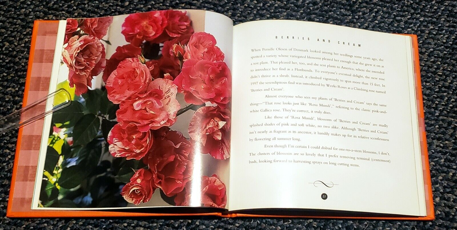 BOOK-RAYFORD CLAYTON REDDELL PASSION OF CUT-FLOWER ROSES-BOUQUET-GROW 40 VARIETY - $4.59