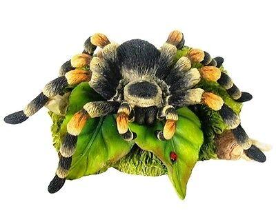 Realistic Tarantula Spider Figurine on Leaf & Rock Free S&H NEW ARACHNID