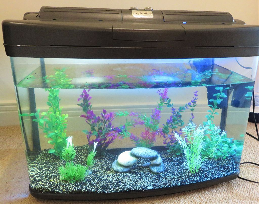 Litre Glass Aquarium Fish Tank