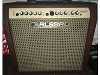 Guitar and microphone amplifier