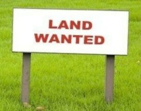 Small field wanted for grazing - Lisburn area