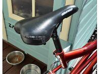 18 Gear Push Bike