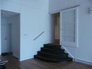 Superb loft, 2 bd, South-West, Griffintown