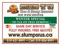 Stumps R Us.  Tree and Stump removal.