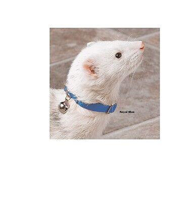 Blue Ferret Collar (Bell Collar for Ferret - Instantly locate Fully adjustable design)