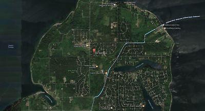 Vacant Land On Anderson Island  Pierce County  Washington