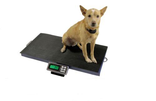 400 LB 38x20 VETERINARY SCALE ANIMAL PET DIGITAL DOG PET GOAT 4H SHEEP PIG VET