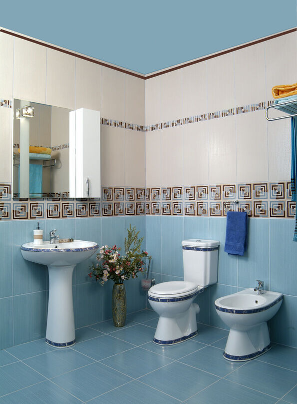 Model 22 White Bathroom Tiles With Border Ideas And Pictures