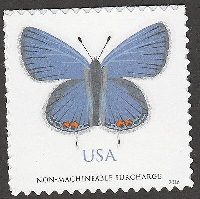 US 5136 EASTERN TAILED-BLUE BUTTERFLY NMS SINGLE MNH 2016