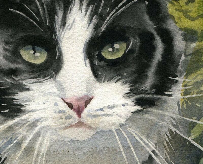 Giclee PRINT Watercolor Art Tabby Cat Art Painting Moon Stars Gray Grey Nursery