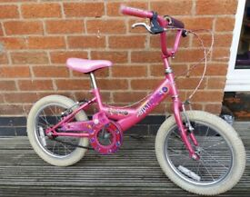 Girls Bumper Sparkle Bike