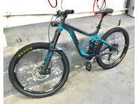 Giant Reign mountain bike