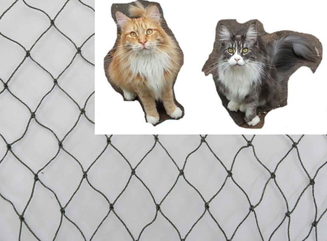Katzenschutznetz oliv drahtverstärkt 3m hoch Meterware 3 x 3 cm Balkon+Geschenk
