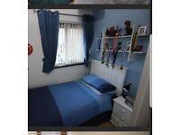 Boys bedroom curtains, lamp shade and 2 duvet sets