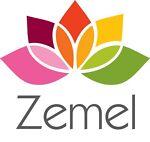 Zemel_Online