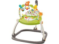 Fisher-Price Space Saver Jumperoo