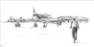 RAF Hawker Hurricane Hawkinge print signed by Battle of Britain pilot P Brothers