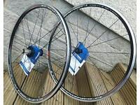 Campagnolo Khamsin Assymetric Wheels