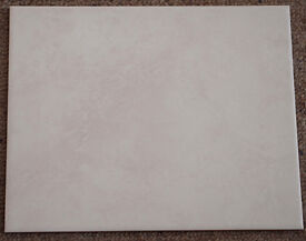 Rectangular Wall tiles 250 x 200 x 6mm