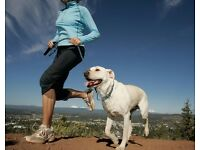 Dog Running Service - Exercise for active dogs!