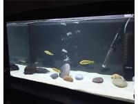 Aqueal 110 litre aquarium full set up