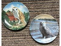 TWO OWL PLATES FOR HANGING / Collector