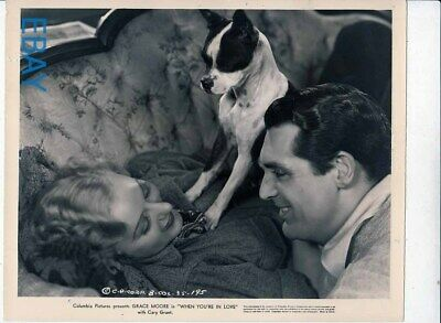 Cute dog and Cary Grant stare at Grace Moore VINTAGE Photo When You're in Love