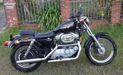 Harley davidson sportster 883 gumtree australia free local harley davidson 883xlh sportster fandeluxe Images