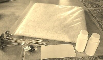 Soy Candle Making Kit  2 lb wax, dye, wicks, wick tabs, fragrance, wick holders