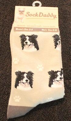 Border Collie Dog Breed Lightweight Stretch Cotton Adult Socks
