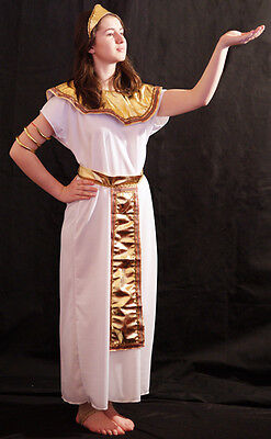 Ancient Egypt-Ancient Rome EGYPTIAN QUEEN CLEOPATRA Fancy Dress Costume  - Ancient Rome Costumes
