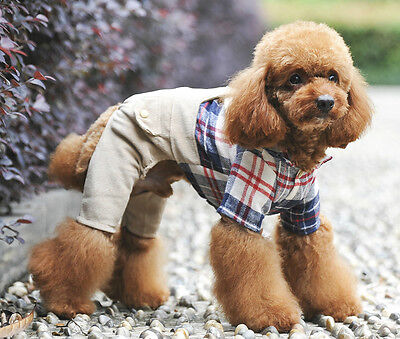 UK Pet Puppy Outfits Apparel for Small Male Boy Dogs Cats Jumpsuits Clothes New](Pet Outfits For Cats)