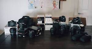 Tamron 24-70 Canon 135L 45 tilt shift + ThinkTank bags + memory Hillcrest Logan Area Preview