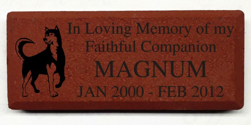 """Engraved Red Brick 4"""" x 8"""" Memorial, Donor SEE VIDEO BELOW, Customize yours now!"""