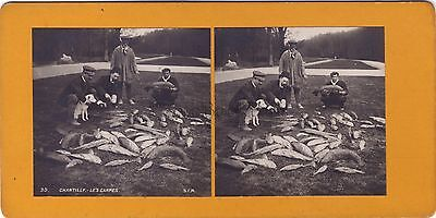 Postal- Chantilly Alcaparras Foto estéreo Stereoview Vintagecolor plata