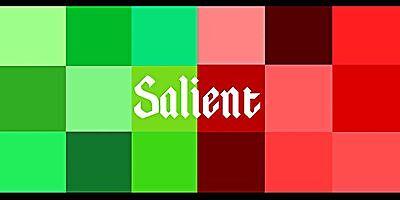 salientsneakers
