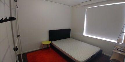 Elsternwick Flatmate Room Rent (close to St Kilda)