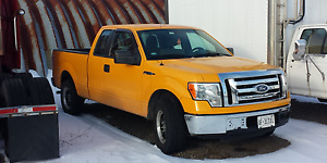 2010 Ford F-150 XL Pickup Truck