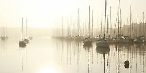 Marina Berth 17 metre. Manly Brisbane South East Preview