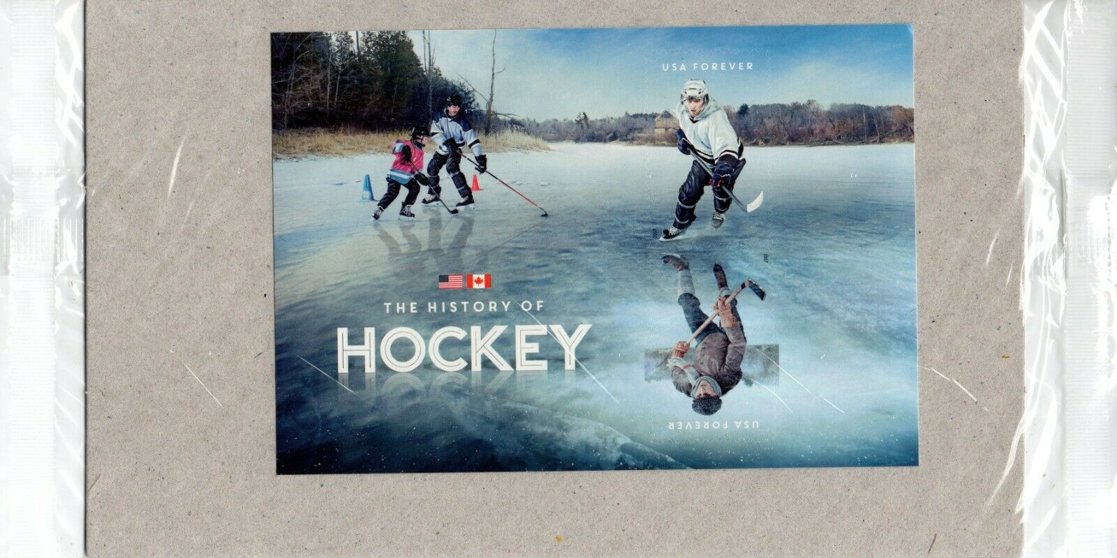 US Stamp Souvenir Sheet 2017 History Of Hockey 5253c Mint Condition  - $2.75