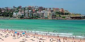 Wanted four international people for Bondi Beach flat North Bondi Eastern Suburbs Preview