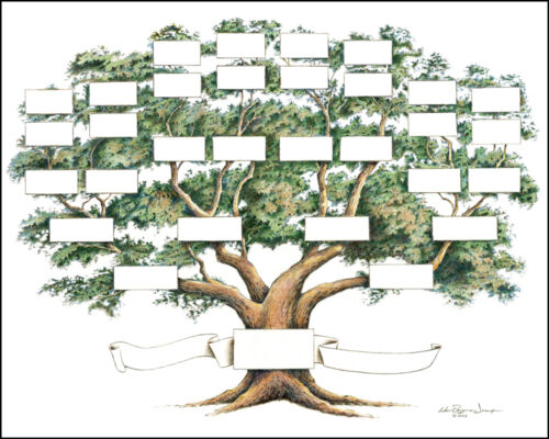 """Family Tree Chart 5 to 6 Generations Genealogy, 14x18"""" Ivory Color"""