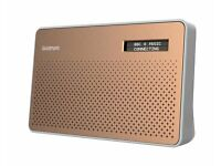 Goodmans Canvas Slate Digital Radio