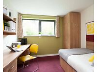 Exeter ensuite student summer accommodation to rent, May-Sep 2021
