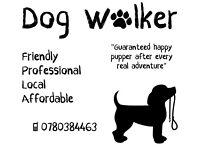 DOG WALKING / PET SITTING / HOME VISITS / FRIENDLY / RESPONSIBLE