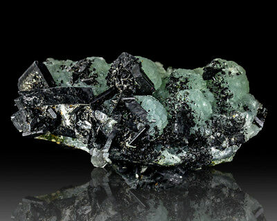 "2.8"" Sharp Slick Black BABINGTONITE Crystals on Green PREHNITE China for sale for sale  Greenfield"