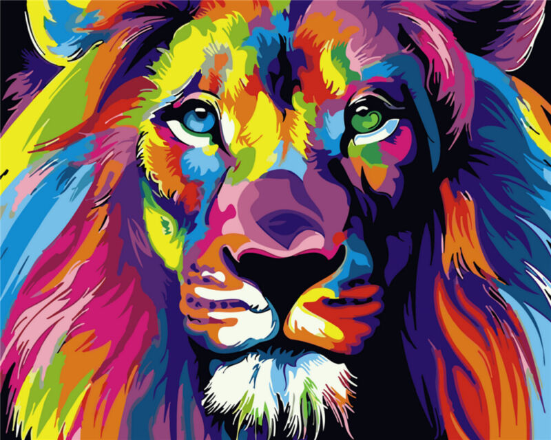 Colorful Lion - USA Store - Paint by Number kit