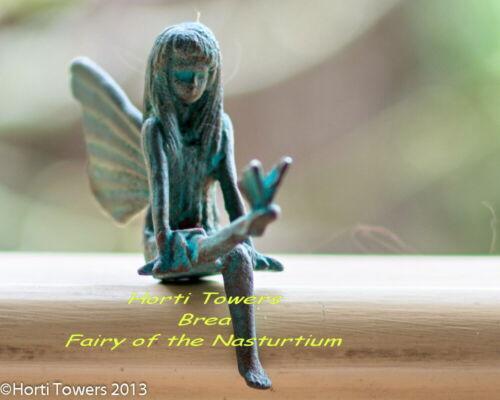"BREA - ""The Iron Fairies"" (Fairy of The Nasturtum) in New Bag Packaging"